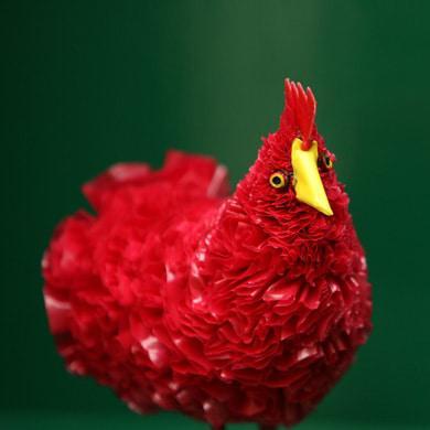 KU-chicken