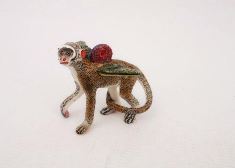 ARD-monkey-7