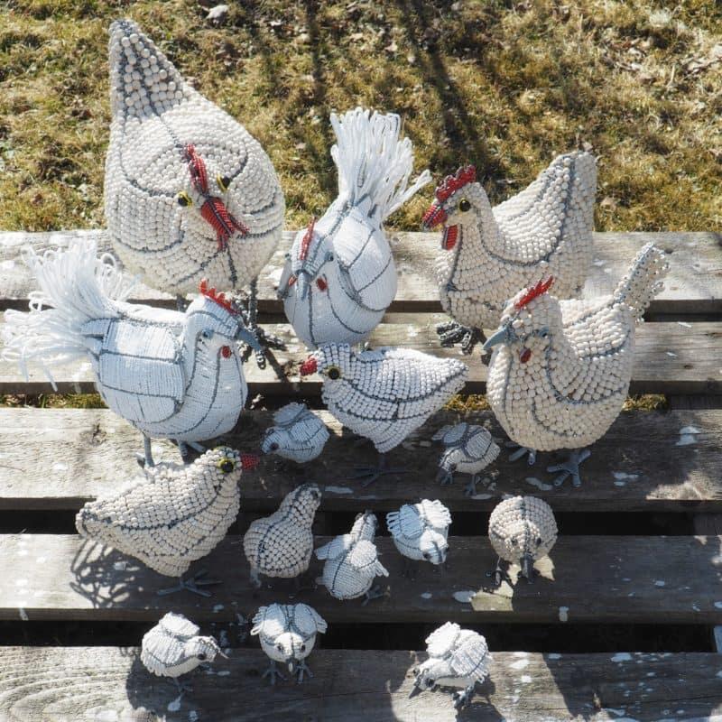 Streetwires hønsefamilie